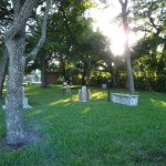 Huguenot Cemetery... what's that by the tree??